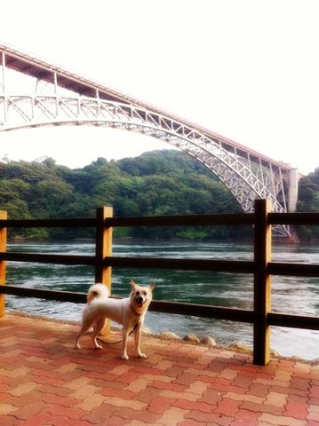 20120724-hanada.jpg