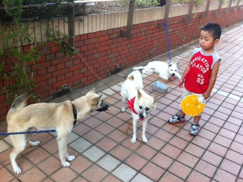 201207805-hanada1.jpg