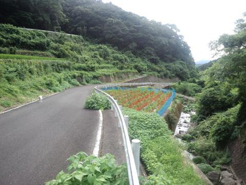 20120806-hanada2.JPG