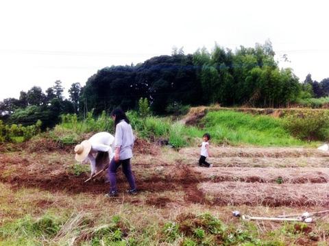 20120812-hanada2.JPG