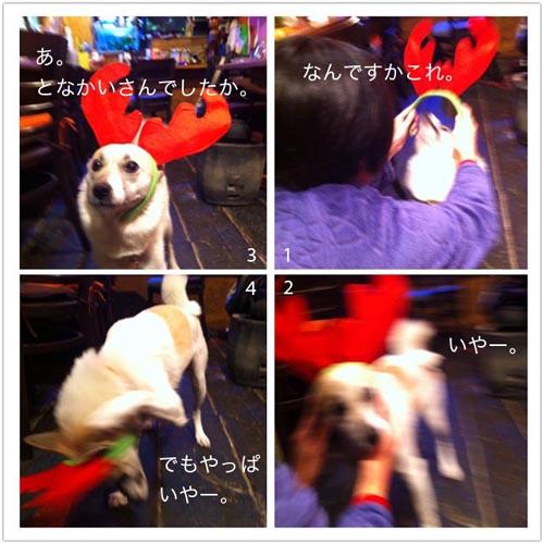 20121225-hanada1.jpg