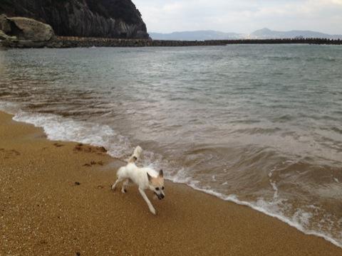 20131211-hanada4.jpg