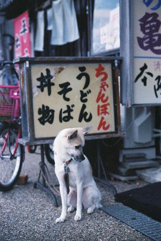 20131218-hanada4.jpg