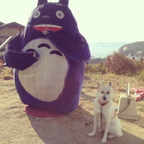 20140126-hanada1.jpg