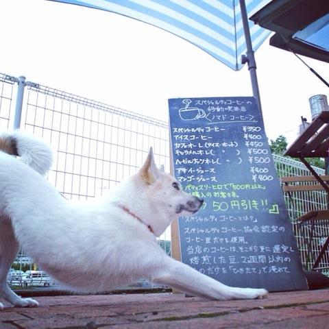 20140623-hanada1.jpg