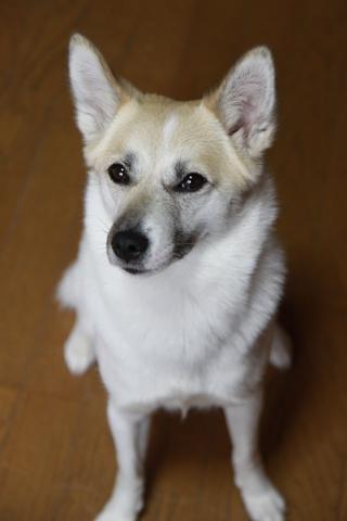 20120714-hanada.jpg
